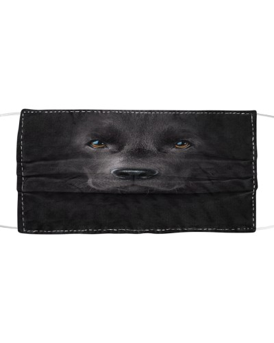 Own special with this mask - labrador