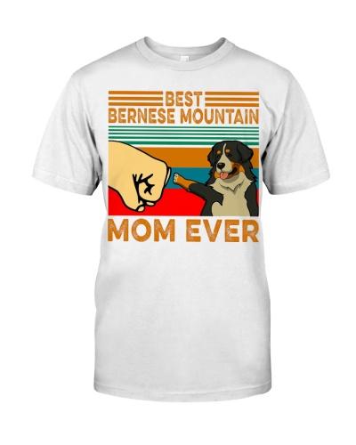 Best Barnese Mountain Mom