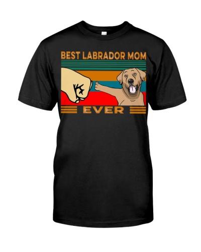 Best Labrador Mom