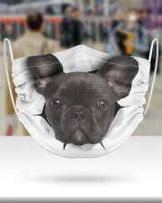 Black Frenchie Face Mask 2 Layer Face Mask - Single aos-face-mask-2-layers-lifestyle-front-48