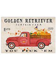 golden retriever pumpkin farm 24x16 Poster front
