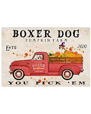 boxer pumpkin farm 24x16 Poster front