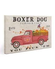 boxer pumpkin farm Gallery Wrapped Canvas Prints tile
