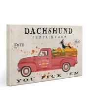 dachshund pumpkin farm Gallery Wrapped Canvas Prints tile