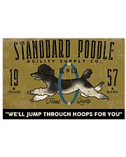 standard poodle agility supply 24x16 Poster front