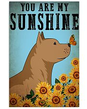 Pitbull You Are My Sunshine 11x17 Poster front