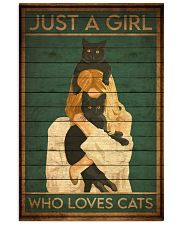 just a girl 123 24x36 Poster front