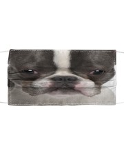 Boston Terriers  Cloth face mask front