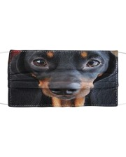 Dachshund 3D Cloth face mask front