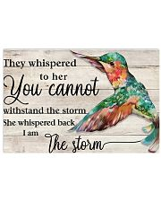 I Am The Storm 17x11 Poster front