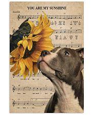 Pitbull Sunshine Poster 11x17 Poster front