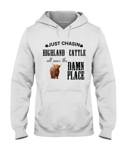 JUST CHASIN HIGHLAND CATTLE