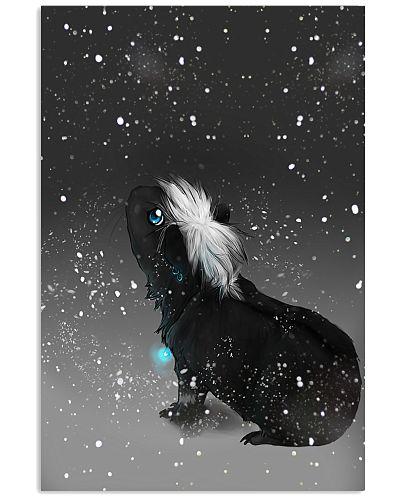 Guinea Pig Black Star Sky