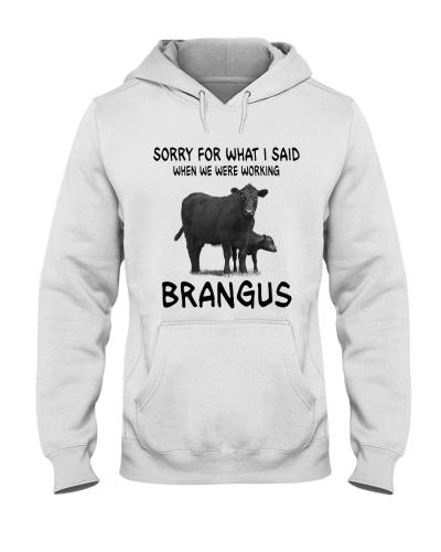 SORRY FOR WHAT I SAID BRANGUS