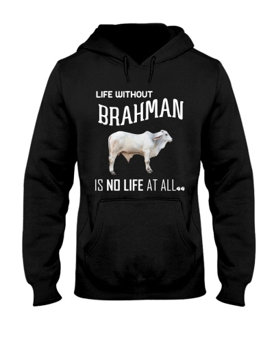 LIFE WITHOUT BRAHMAN