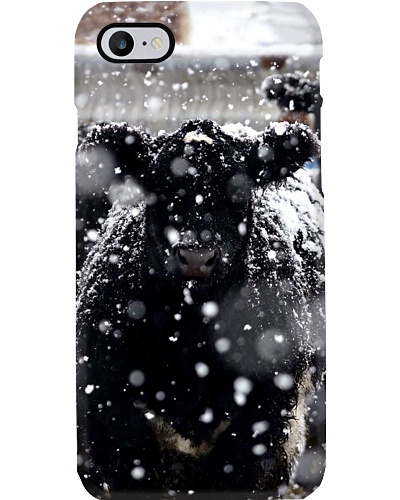 SNOWY BLACK ANGUS