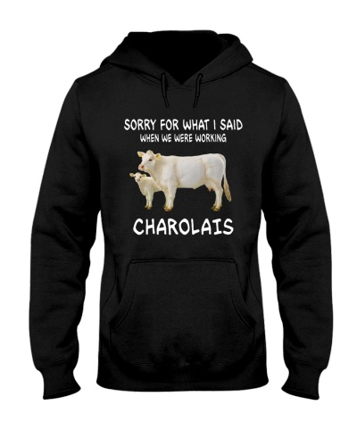 SORRY FOR WHAT I SAID CHAROLAIS
