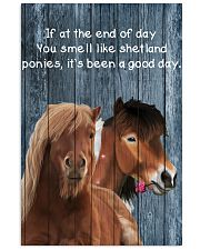 Poster You Smell Like - Shetland Pony 11x17 Poster front