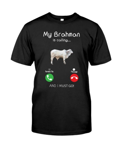 MY BRAHMAN IS CALLING