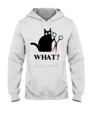 What Hooded Sweatshirt thumbnail