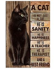 A cat is not just a cat he is sanity he is happine 11x17 Poster front