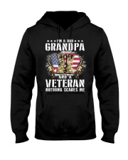 I'm A Dad Grandpa And A Veteran Nothing Scares Me  Hooded Sweatshirt thumbnail