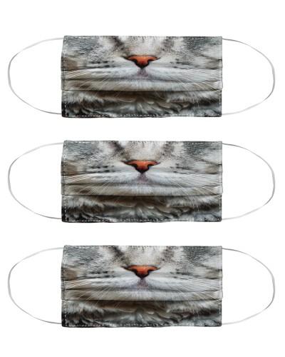 Orange nose cat