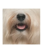 Havanese dog face Cloth face mask aos-face-mask-coverlet-lifestyle-front-02