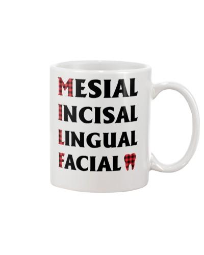 Dental Mesial Incisal