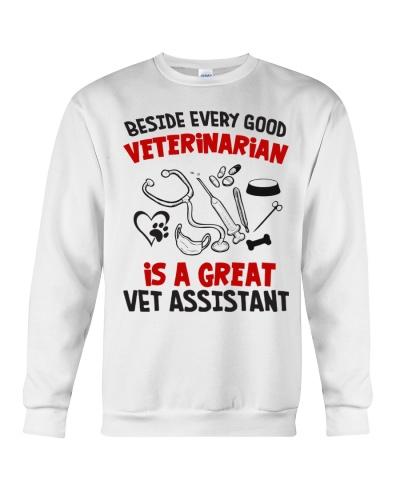 Beside Good Veterinarian Is A Great Vet Assistant