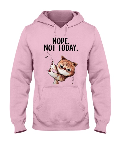 Nope not today kute cats