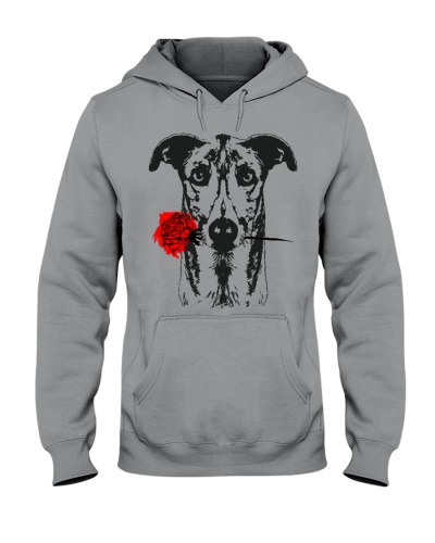Cute Greyhound with Rose