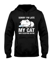 My cat was sleeping on me Hooded Sweatshirt thumbnail