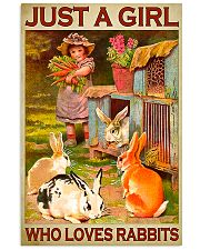 Girl Loves Cute Rabbits 11x17 Poster front