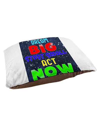 DREAM BIG START SMALL ACT NOW