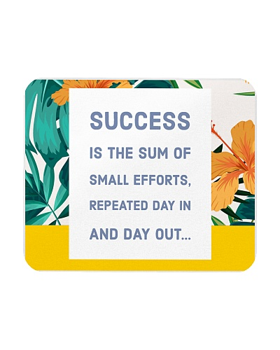 Success is in your efforts