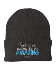 Today Is Going To Be Amazing - Signature Design 1 Knit Beanie thumbnail