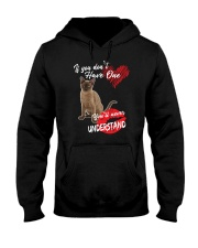 If You Don't Have One - Special Shirt Hooded Sweatshirt thumbnail