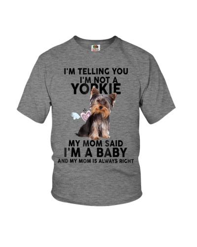 Yorkie Christmas 20