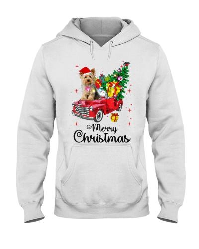 Yorkie Christmas 15