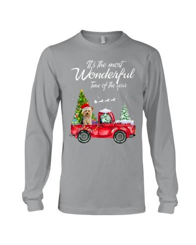 Yorkie Christmas 13