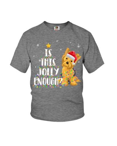 Yorkie Christmas 2