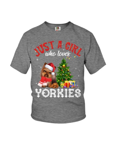 Yorkie Christmas 14