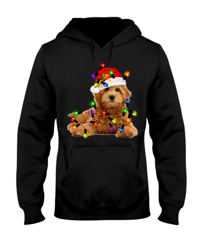 Goldendoodle Christmas 28