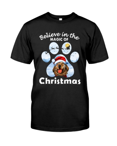 Believe In Magic Of Christmas2