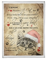 """I Know im just a Cat Small Fleece Blanket - 30"""" x 40"""" front"""