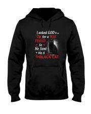 Cat Asked God Hooded Sweatshirt thumbnail