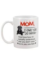 Cane Corso - I owe you Mom 1806P Mug back