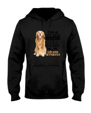 Golden Retriever and Me 2006 Hooded Sweatshirt tile