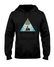 Doberman Pinscher Pyramid 1806 Hooded Sweatshirt thumbnail